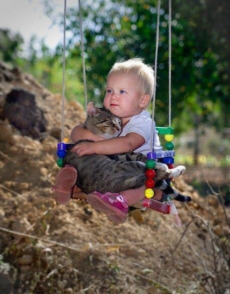 赤ちゃん,戯れる,犬,猫,画像,まとめ019