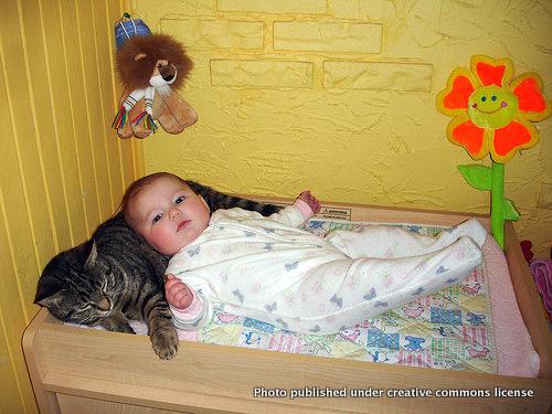 赤ちゃん,戯れる,犬,猫,画像,まとめ020