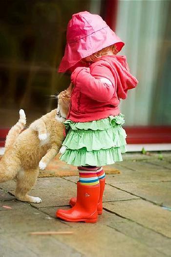 子供,大好き,動物,画像,まとめ024