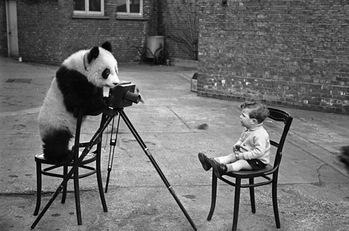 子供,大好き,動物,画像,まとめ065