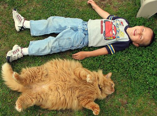 子供,大好き,動物,画像,まとめ073