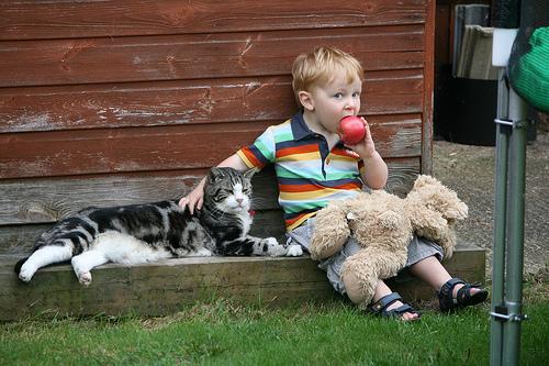 子供,大好き,動物,画像,まとめ074