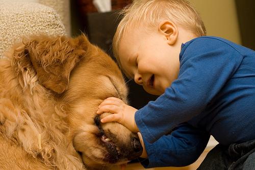 子供,大好き,動物,画像,まとめ077