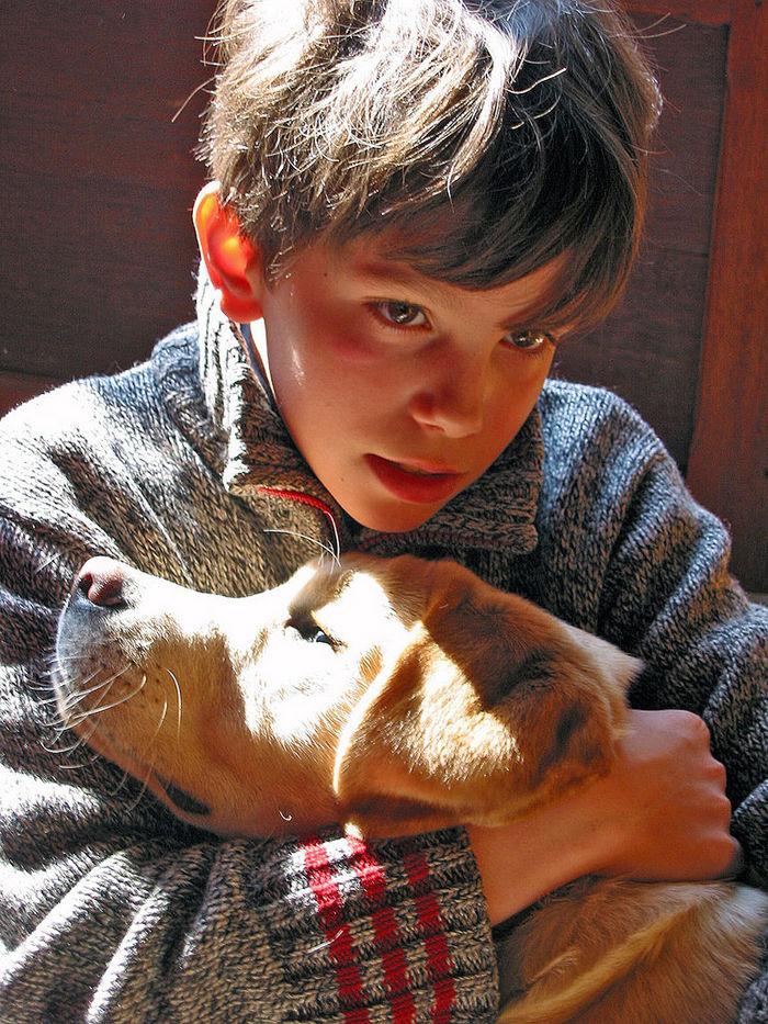 子供,大好き,動物,画像,まとめ078
