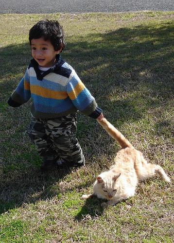 子供,大好き,動物,画像,まとめ079
