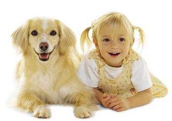 子供,大好き,動物,画像,まとめ081