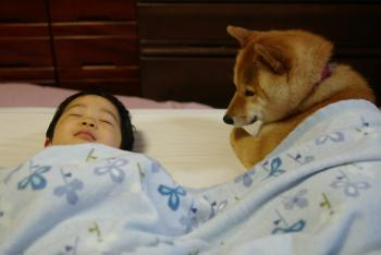 子供,大好き,動物,画像,まとめ117