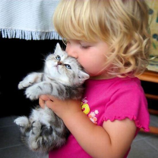 子供,大好き,動物,画像,まとめ124
