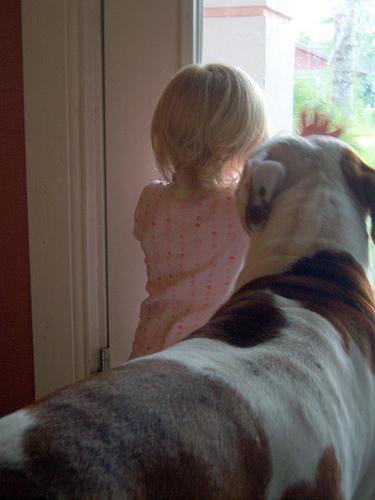 子供,大好き,動物,画像,まとめ125