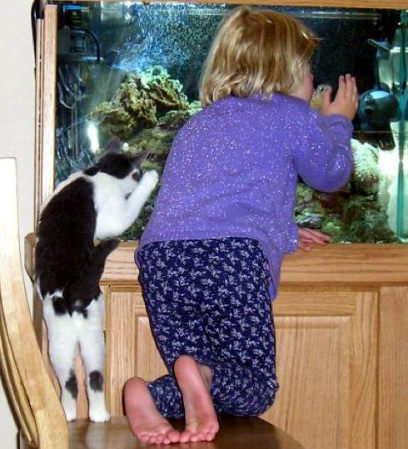 子供,大好き,動物,画像,まとめ132