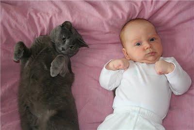 子供,大好き,動物,画像,まとめ134