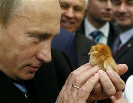 オソロシア,プーチン大統領,厳選,コラ画像,まとめ015