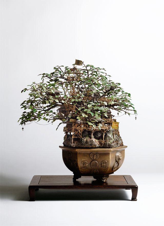 凄すぎる,盆栽アート,画像,まとめ001