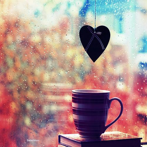 雨の日,撮影,美しい,写真,まとめ007