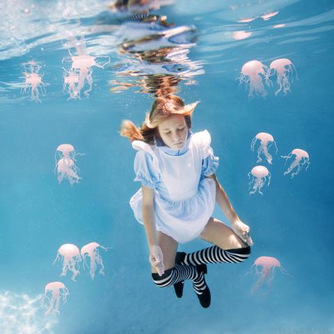 美しすぎる,水中,フォト,画像,まとめ008