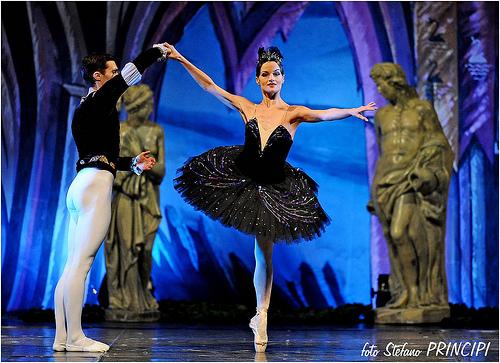 美しい,バレエダンサー,画像,まとめ009