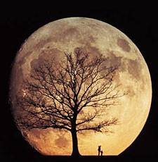 美しすぎる,月,アート写真,まとめ011