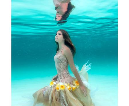 美しすぎる,水中,フォト,画像,まとめ013