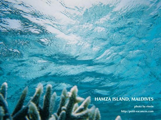 美しすぎる,透明,海,画像,まとめ014