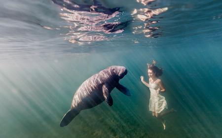 美しすぎる,水中,フォト,画像,まとめ017