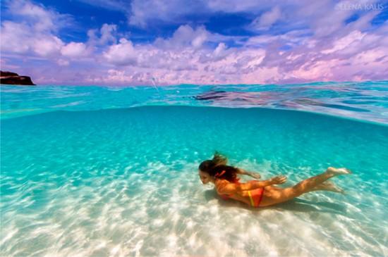 美しすぎる,水中,フォト,画像,まとめ018