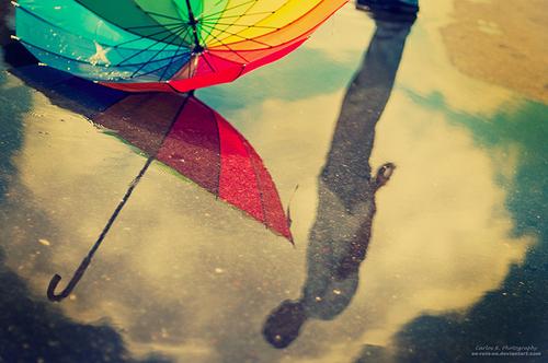 雨の日,撮影,美しい,写真,まとめ026