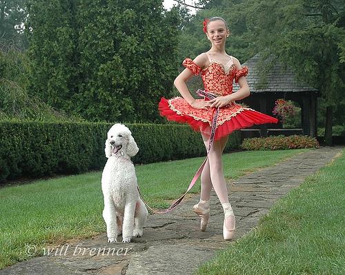 美しい,バレエダンサー,画像,まとめ031