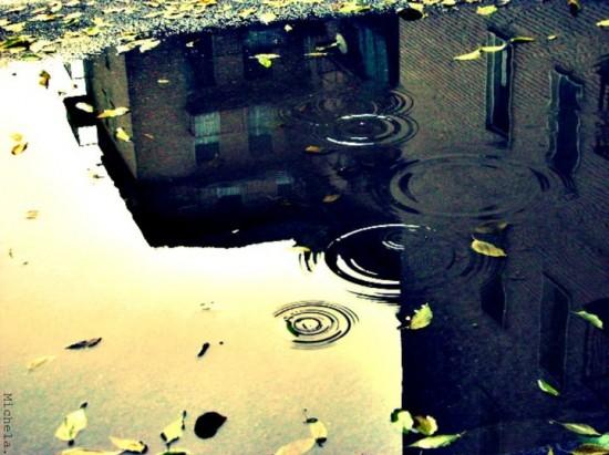 雨の日,撮影,美しい,写真,まとめ051