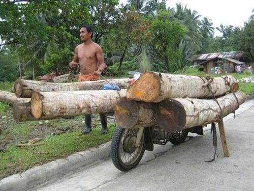 限界,バイク,荷物,積んでいる,おもしろ画像,まとめ016