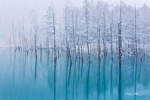 絶景,思わず見とれてしまう,冬,雪景色,画像,まとめ004