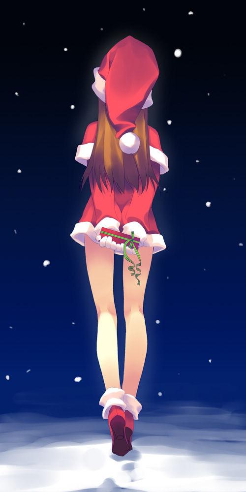 二次,可愛すぎる,サンタ,画像,まとめ018