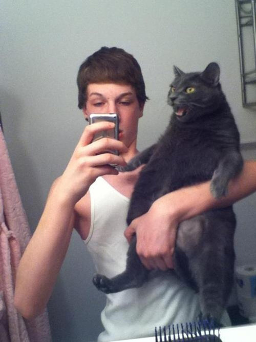 怖い,愛らしい,黒猫,画像,貼っていく026