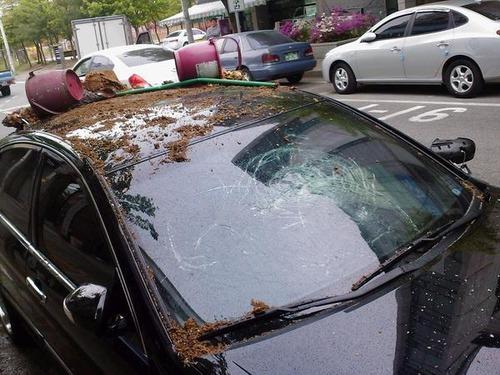 ざまぁ!,海外,違法駐車,イタズラ,画像012