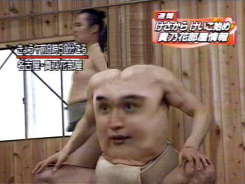 笑ったら負け,相撲,コラ,おもしろ画像013