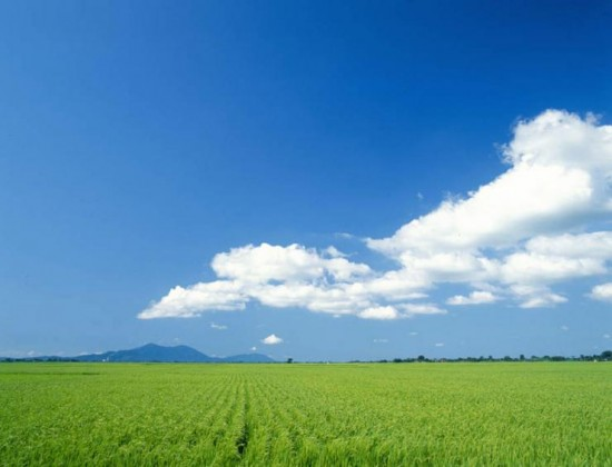 美しすぎる,田舎,風景画像,まとめ018