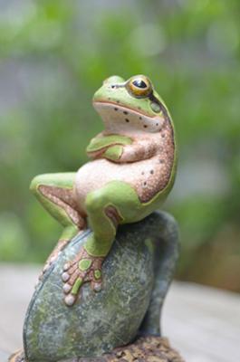 愛らしい,カエル,画像まとめ023