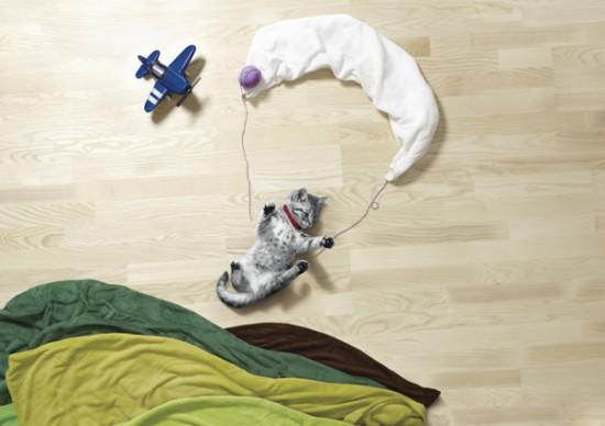 可愛い,動物,寝相アート,画像,まとめ001