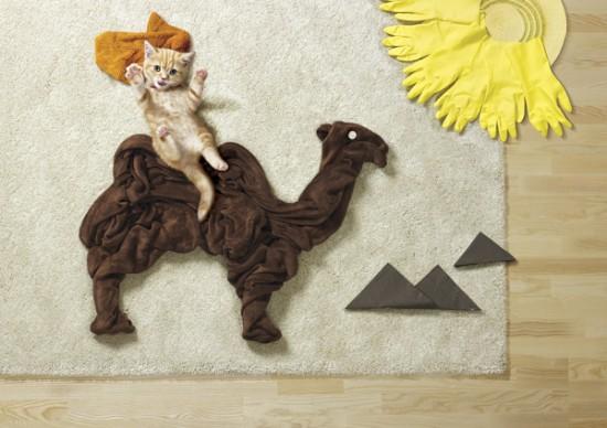 可愛い,動物,寝相アート,画像,まとめ004