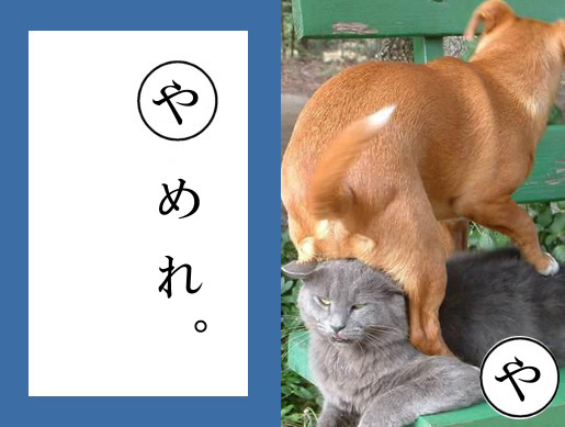 新年,初笑い,動物,おもしろ,ネタ画像,まとめ005