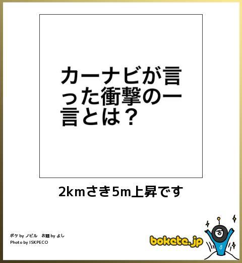 爆笑注意,おもしろ,bokete,ボケて,画像,まとめ3759