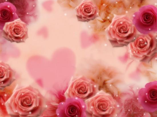 バラ,画像,まとめ013