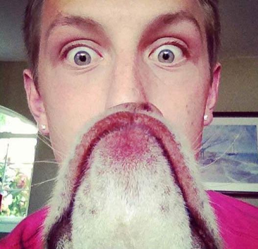 動物髭,面白画像,まとめ008