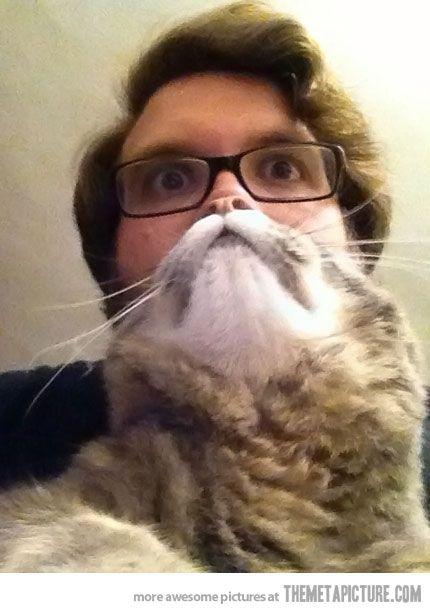 動物髭,面白画像,まとめ025