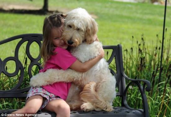人間,仲良し,犬,画像,まとめ015