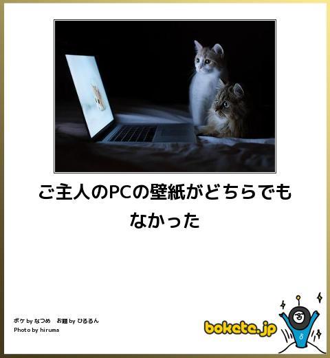 爆笑、おもしろ、bokete、ボケて,画像,まとめ,面白4045