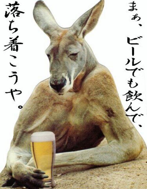 笑ってしまう,動物,面白,画像007