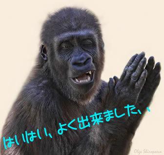 笑ってしまう,動物,面白,画像013