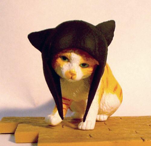 キュン,帽子,ネコ,画像,まとめ011