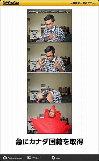 爆笑,腹痛い,bokete,画像,まとめ1116