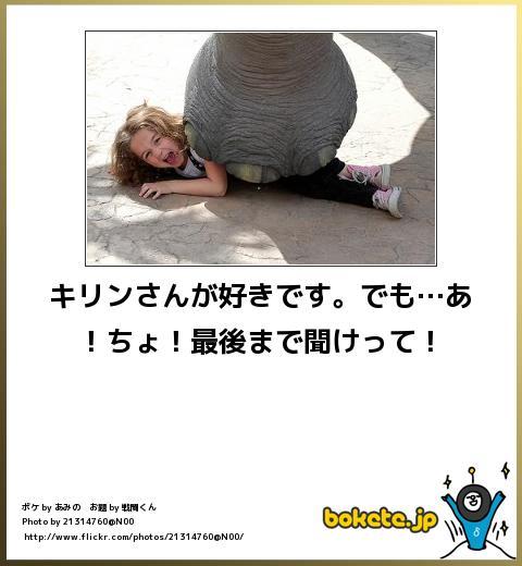爆笑,腹痛い,bokete,画像,まとめ1259